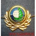 Петличная эмблема Экологический надзор