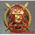 Нагрудный знак Центральное казачье войско