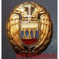 Нагрудный знак ФСО России 25 лет безупречной службы