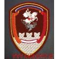 Нарукавный знак военнослужащих ОДОН Росгвардии