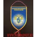 Вымпел с эмблемой Службы по защите конституционного строя и борьбе с терроризмом ФСБ РФ