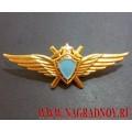 Классность ВВС России летчик