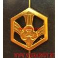 Эмблема войск РХБЗ на погоны или петлицы