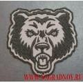 Нашивка Дикий медведь