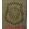 Шеврон 106 ВДД для ВКБО приказ 300