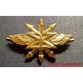 Петличная эмблема Войск связи