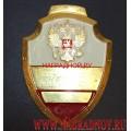 Нагрудный знак с гербом России