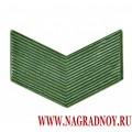 Знак различия для полевой формы звание старший сержант