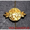 Петличная эмблема войск РЭБ