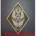 Нарукавный знак Московского пограничного института ФСБ России для полевой формы