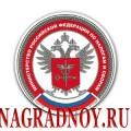 Виниловый магнит с эмблемой МНС России