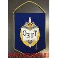 Вымпел с эмблемой ОЗГТ Совета Федерации