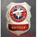 Нагрудный знак МЧС России Постовой