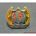 Фрачный значок с эмблемой Международной полицейской ассоциации IPA