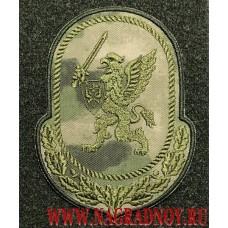 Камуфлированный шеврон расцветки Мох Центральный аппарат ВНГ с липучкой