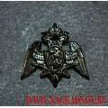 Петличная эмблема для специальной формы сотрудников ФСВНГ РФ