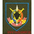 Шеврон 210 зенитного ракетного полка приказ 300