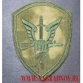 Шеврон расцветки Мох ЦСН сил оперативного реагирования и авиации ВНГ