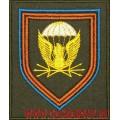 Шеврон 38-го Отдельного полка связи Воздушно-десантных войск полевой