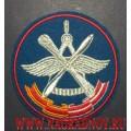 Шеврон 929 ГЛИЦ ВВС России
