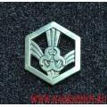 Петличная эмблема войск РХБЗ полевая