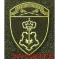 Шеврон ОВО Центральный округ Росгвардия для полевой формы с липучкой