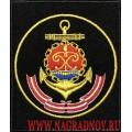 Шеврон военнослужащих Балтийского флота ВМФ России
