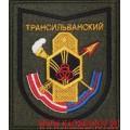 Шеврон 282 учебного центра войск РХБЗ приказ 300