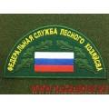 Шеврон Федеральная служба лесного хозяйства с липучкой