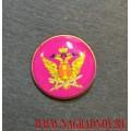 Фрачный значок с эмблемой ФСИН России