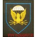 Шеврон для полевой формы 38 ОПС ВДВ России приказ 300