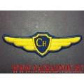 Нашивка на грудь Сн для формы ВВС