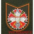 Шеврон военнослужащих ЦА ГРУ ГШ ВС РФ для офисной формы