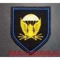 Шеврон 38-го отдельного полка связи ВДВ России для кителя